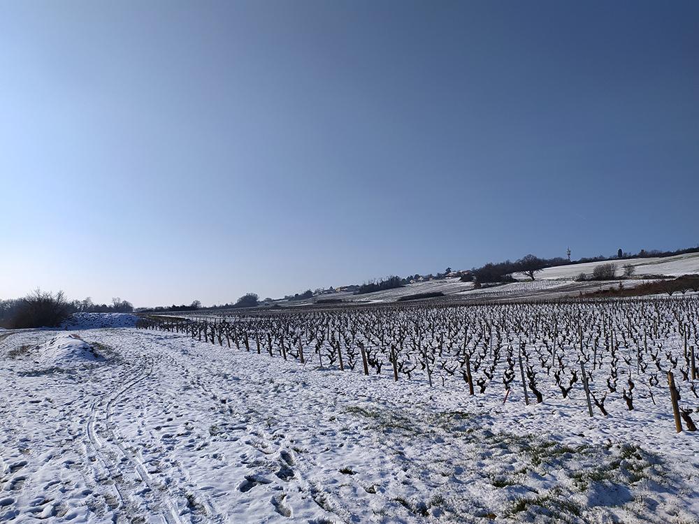 Chazay sous la neige